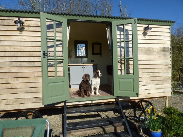 The Three Spaniels Shepherd Hut