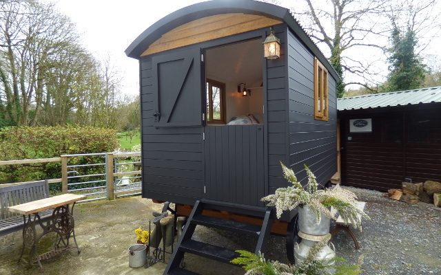 Signal Black Shepherd Hut