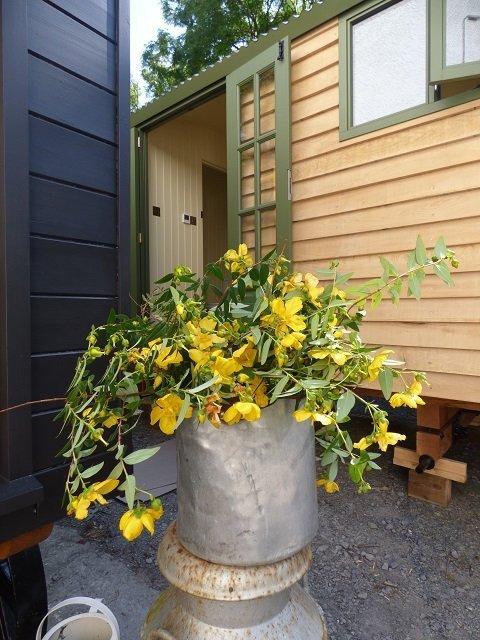 Shepherd Hut & Flowers