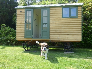 Shepherd Hut and Dog