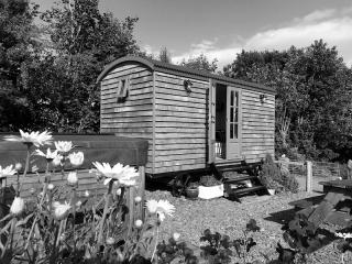 Bespoke Shepherd Hut through the flowers - black and white
