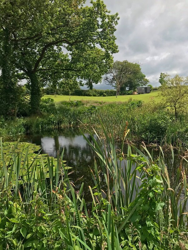 Shepherd hut in beautiful rural location with pond